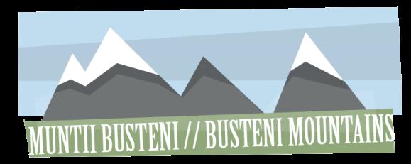 busteni header