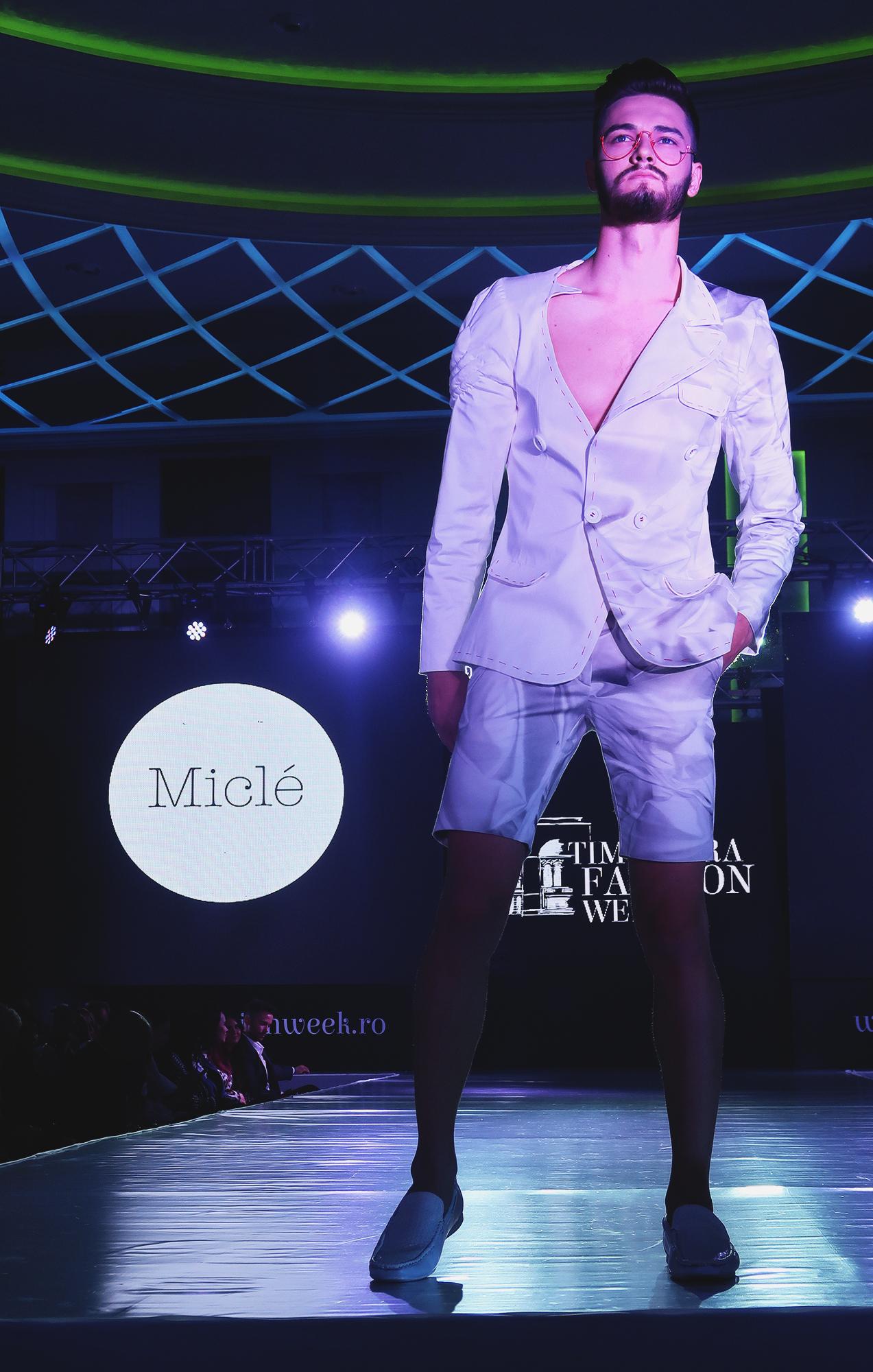 micle (2)